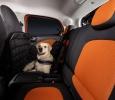 smart forfour mit readyspace Sitzen